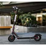 Escooter Bird
